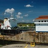 Our biggest interest was in seeing the Canal Zone, and we made a day trip to the Miraflores Locks.  There was a lot to see; the locks are very narrow,