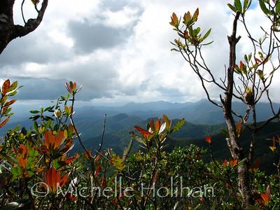 Rio Platano Biosphere Preserve from Pico Dama