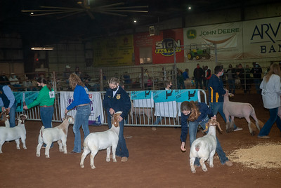 central_20210128_goats006