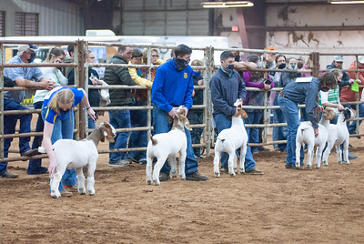 central_20210128_goats007