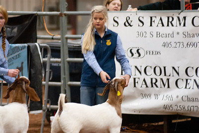 2020130_central_district_goats-16