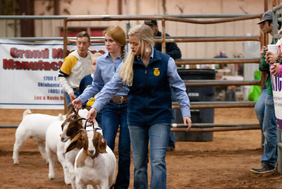 2020130_central_district_goats-13