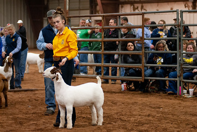 2020130_central_district_goats-3