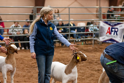 2020130_central_district_goats-22