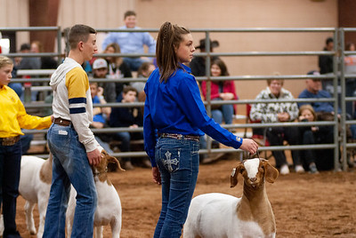 2020130_central_district_goats-23