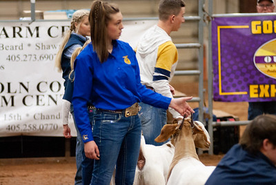 2020130_central_district_goats-19