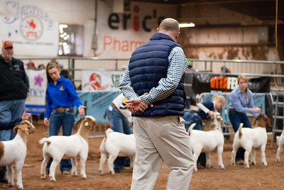 2020130_central_district_goats-14