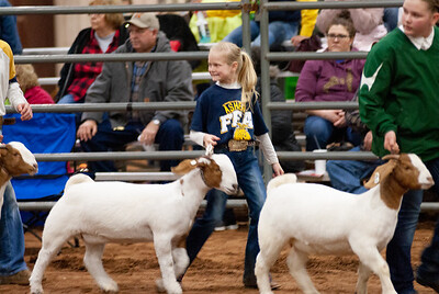2020130_central_district_goats-9