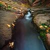 #16  River Runs Deep