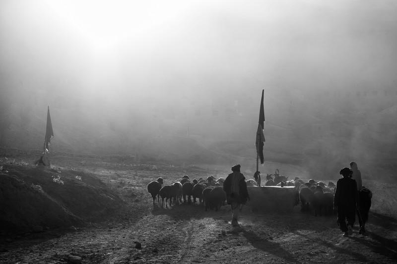 Bamiyan Valley