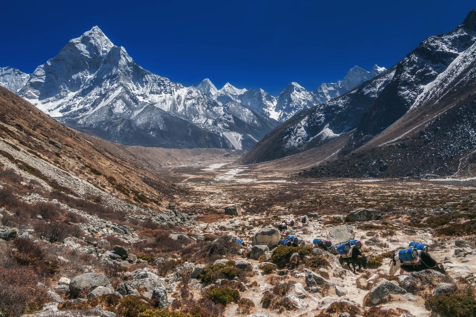 mount everest region trekking