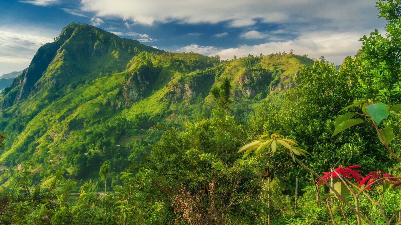 The Lush green hills of Central Sri Lanka