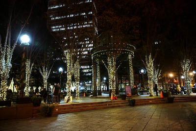 2015 Holiday Lights - Downtown