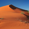Sand dune crest