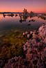Tufas, Mono Lake, California