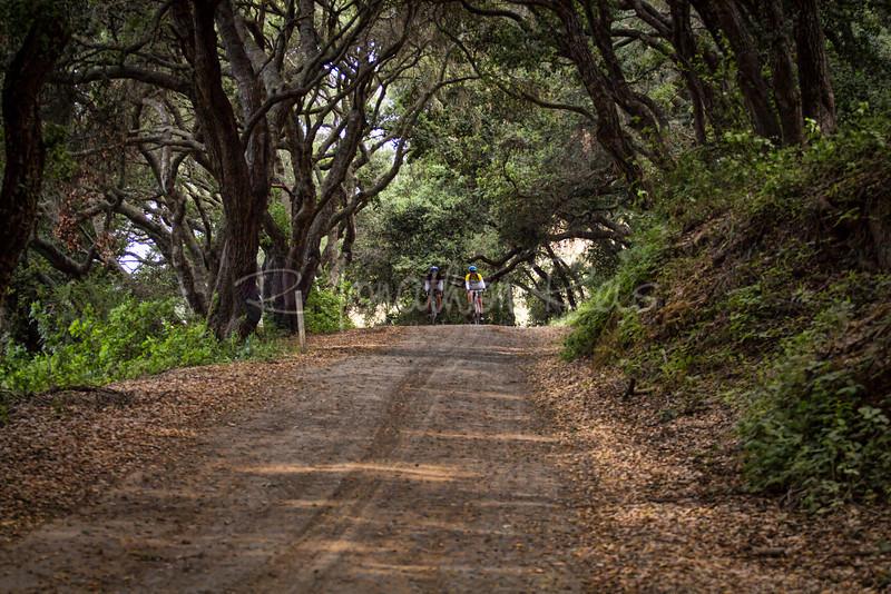 Prefumo Canyon Ride