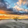pismo-dunes-6444