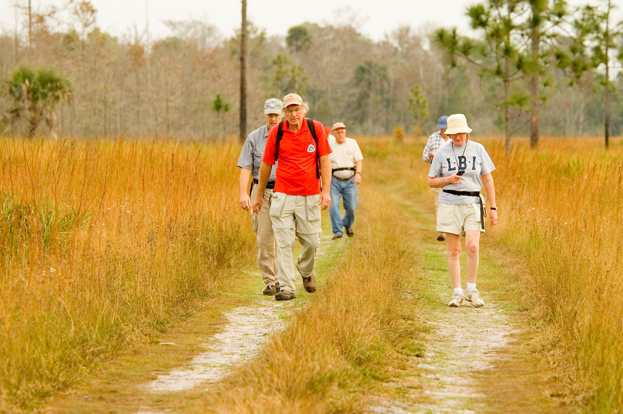 Hikers on the Florida Trail<br /> location: Forever Florida<br /> PHOTO CREDIT: M. Timothy O'Keefe / Florida Trail Association