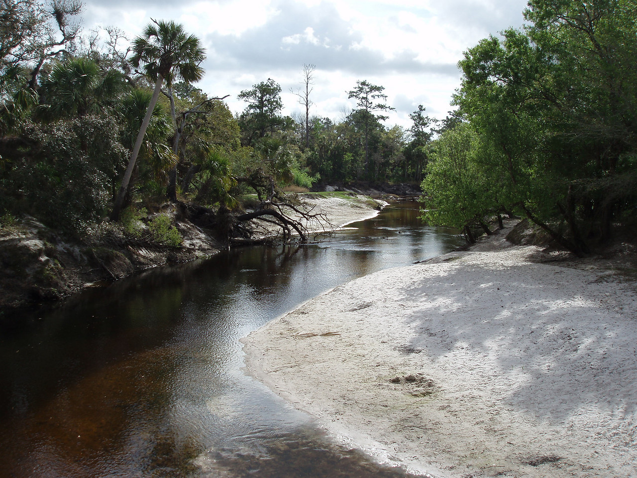Econlockhatchee River<br /> PHOTO CREDIT: Robert Coveney / Florida Trail Association