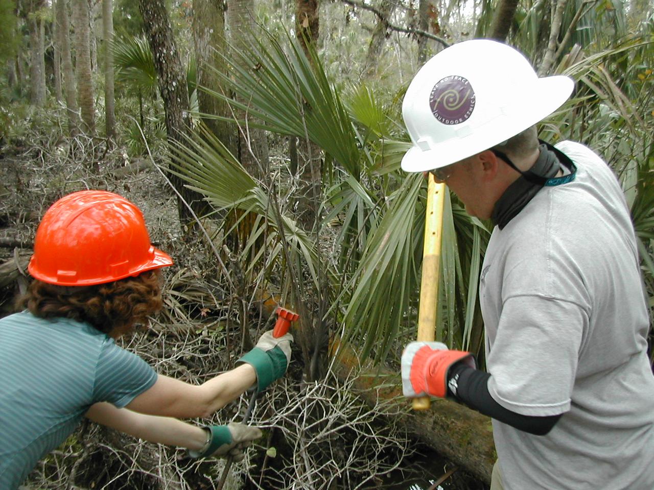 F-Troop at work<br /> PHOTO CREDIT: Sandra Friend / Florida Trail Association