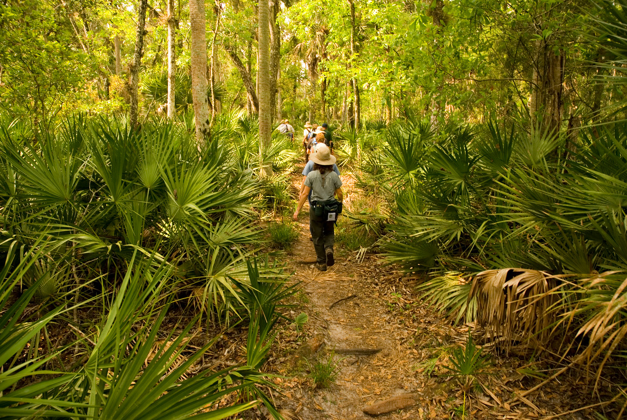 Hiking the Florida Trail<br /> PHOTO CREDIT: M. Timothy O'Keefe / Florida Trail Association