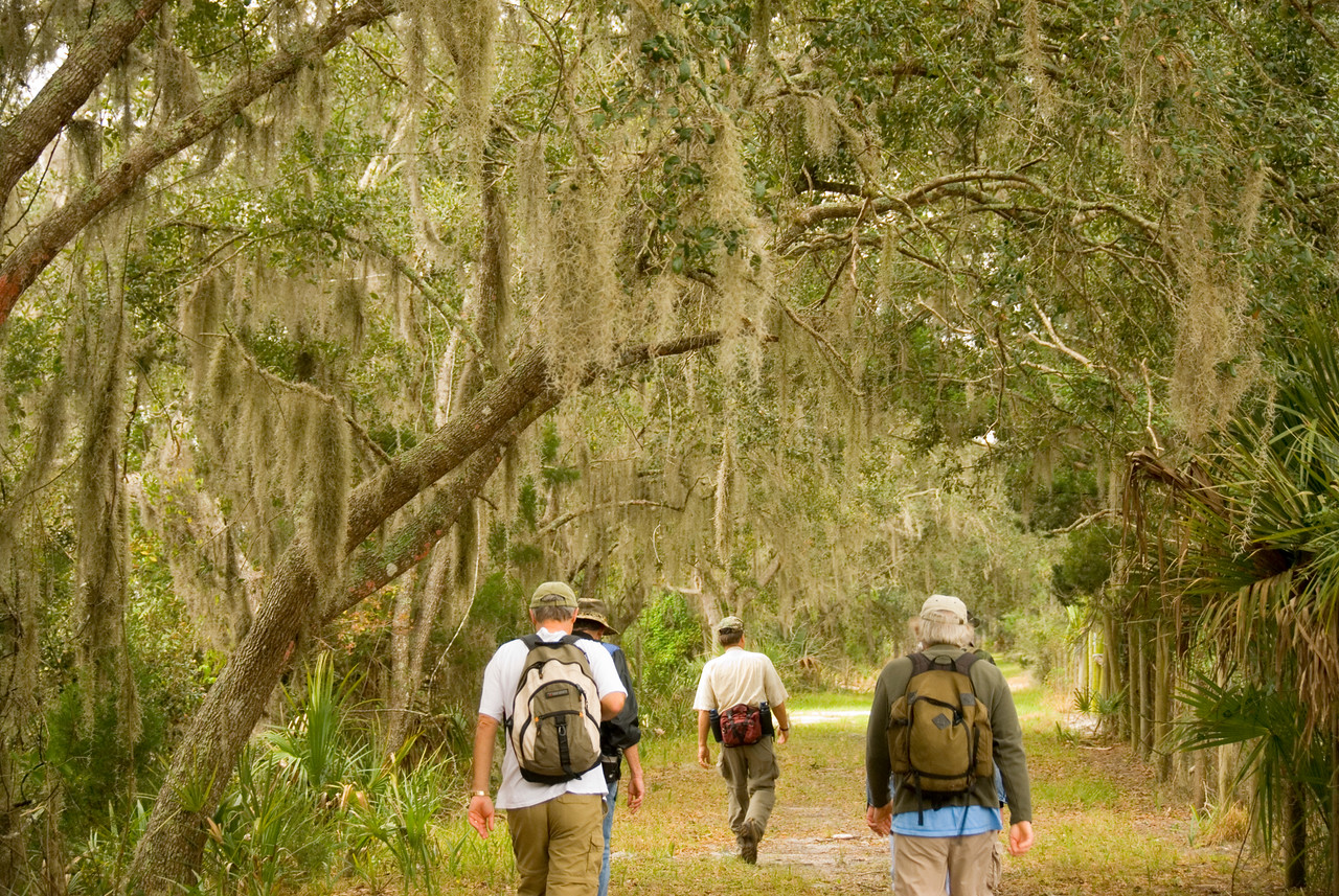Hikers<br /> PHOTO CREDIT: M. Timothy O'Keefe / Florida Trail Association
