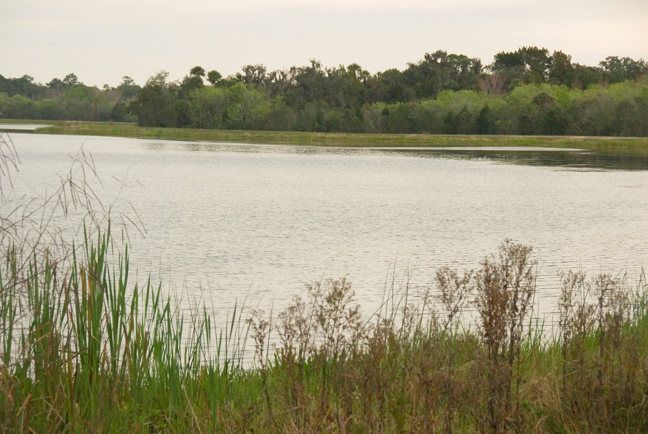 Ponds at Orlando Wetlands Park<br /> PHOTO CREDIT: M. Timothy O'Keefe / Florida Trail Association