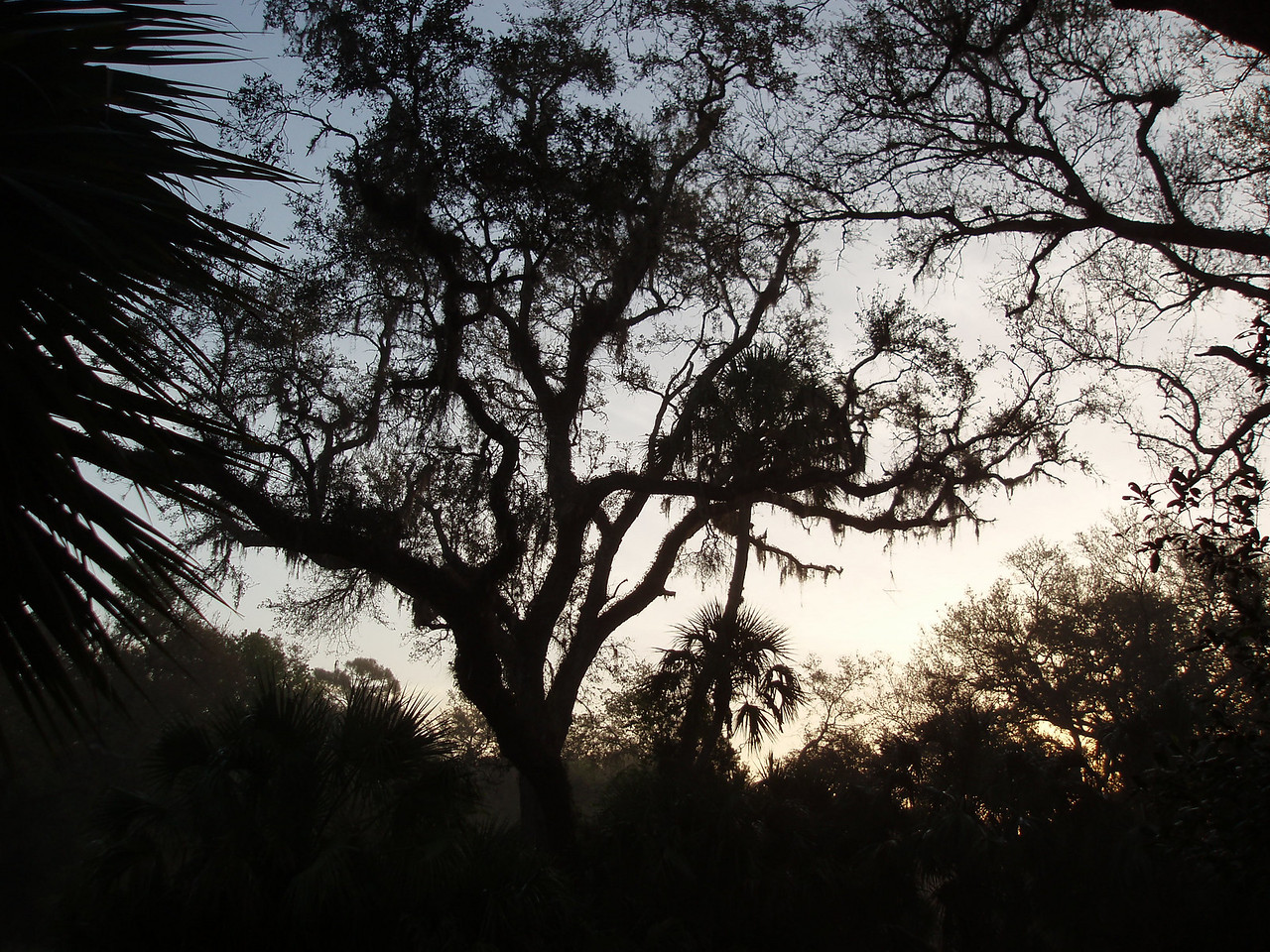 Sunrise over Seminole Ranch<br /> PHOTO CREDIT: Robert Coveney / Florida Trail Association