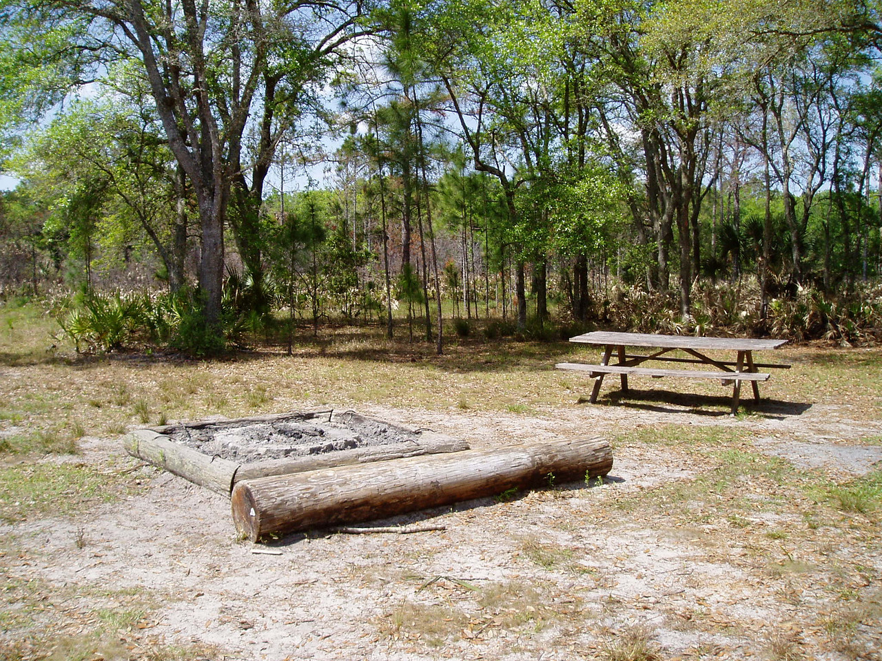 Campsite at Seminole Ranch<br /> PHOTO CREDIT: Robert Coveney / Florida Trail Association