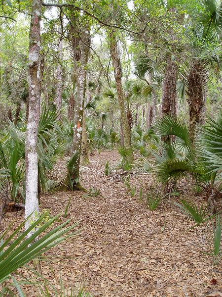 Seminole Ranch