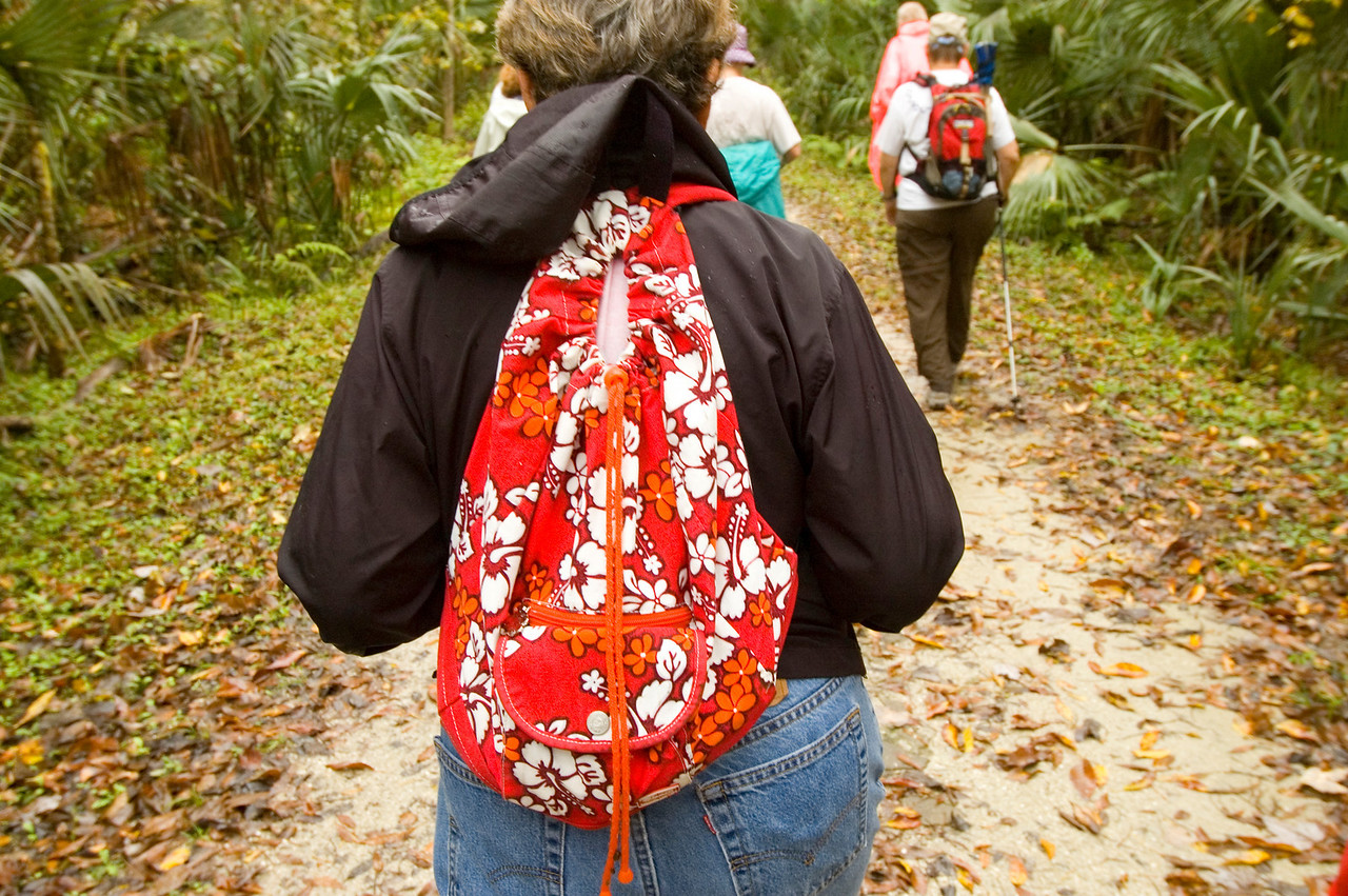 Hiking the Osprey Trail<br /> PHOTO CREDIT: M. Timothy O'Keefe / Florida Trail Association