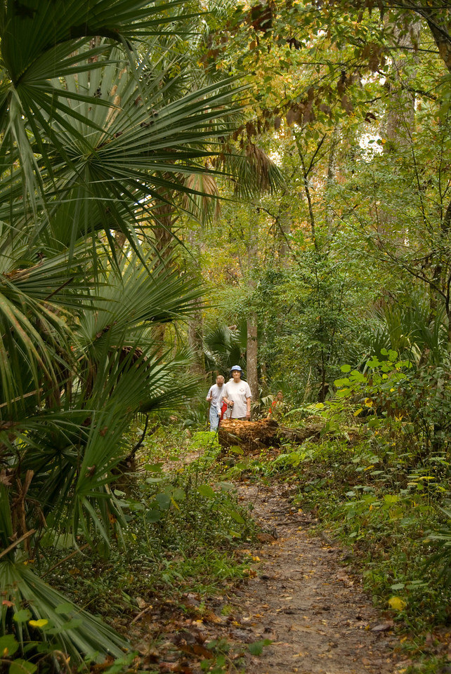 Hiking the Florida Trail<br /> location: Winter Springs<br /> PHOTO CREDIT:  M. Timothy O'Keefe / Florida Trail Association
