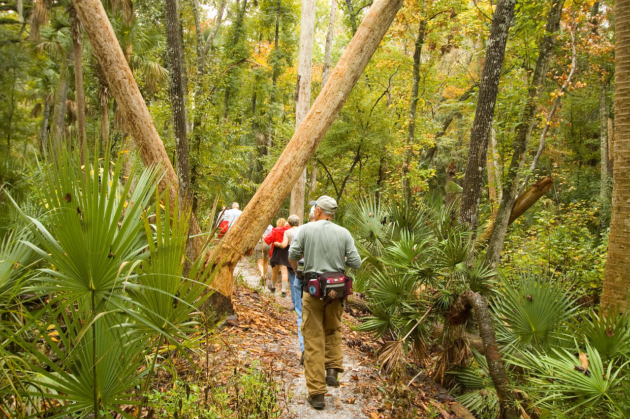 Florida Trail along Soldier Creek<br /> location: Winter Springs<br /> PHOTO CREDIT:  M. Timothy O'Keefe / Florida Trail Association