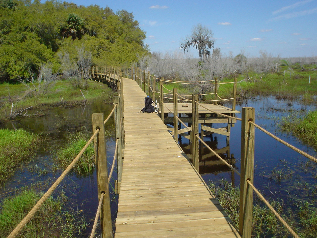 Bluff Hammock Boardwalk on the Kissimee River<br /> location: Bluff Hammock<br /> photo credit: Bob Woods / Florida Trail Association