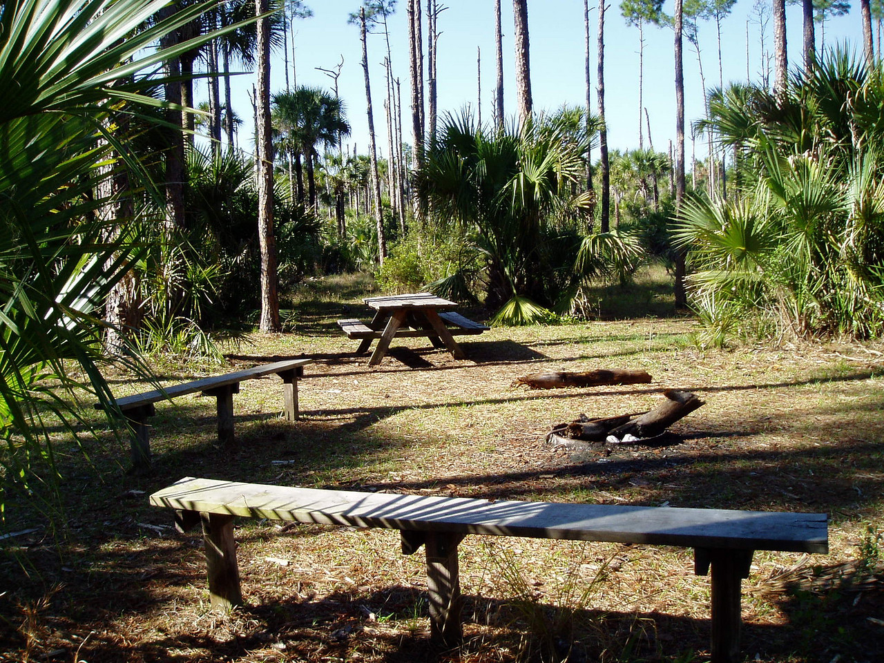 Tiger Creek Campsite, Tosohatchee<br /> Photo by Deb Blick