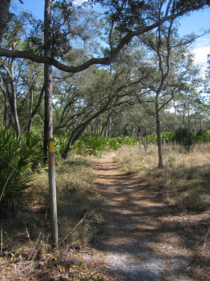 Wekiwa Springs trail<br /> Photo by Sandra Friend