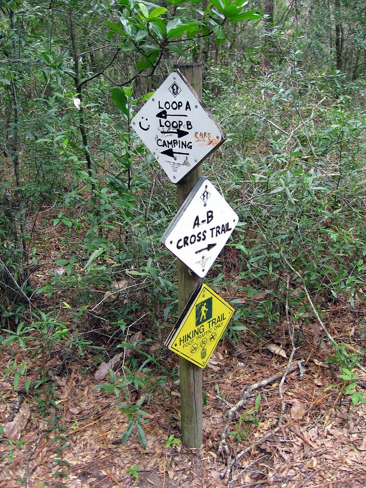 Croom Loop Trails<br /> location: Ridge Manor<br /> photo credit: FTA / Deb Blick