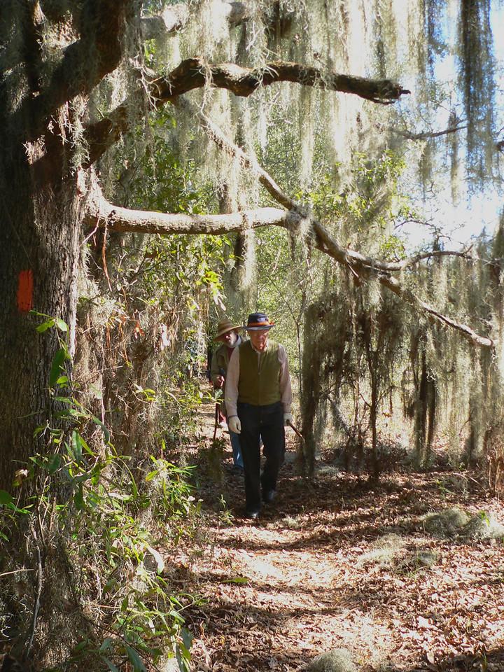 Ghoulish moss<br /> PHOTO CREDIT: Florida Trail Association / Diane Dammiller