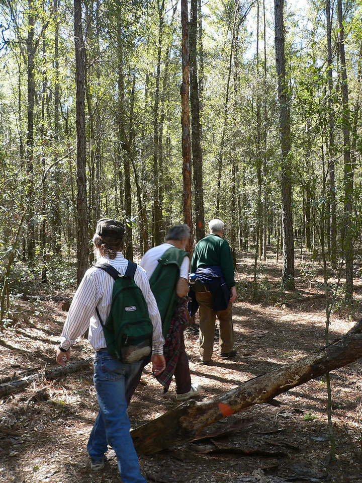 Round a downed tree<br /> PHOTO CREDIT: Florida Trail Association / Diane Dammiller