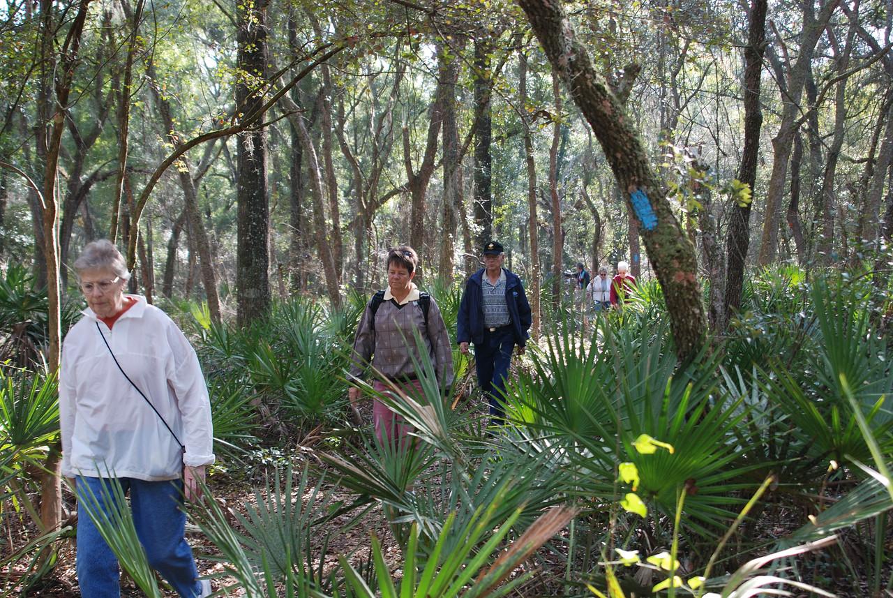Hiking the Land Bridge Blue Loop<br /> PHOTO CREDIT: Florida Trail Association / Diane Dammiller
