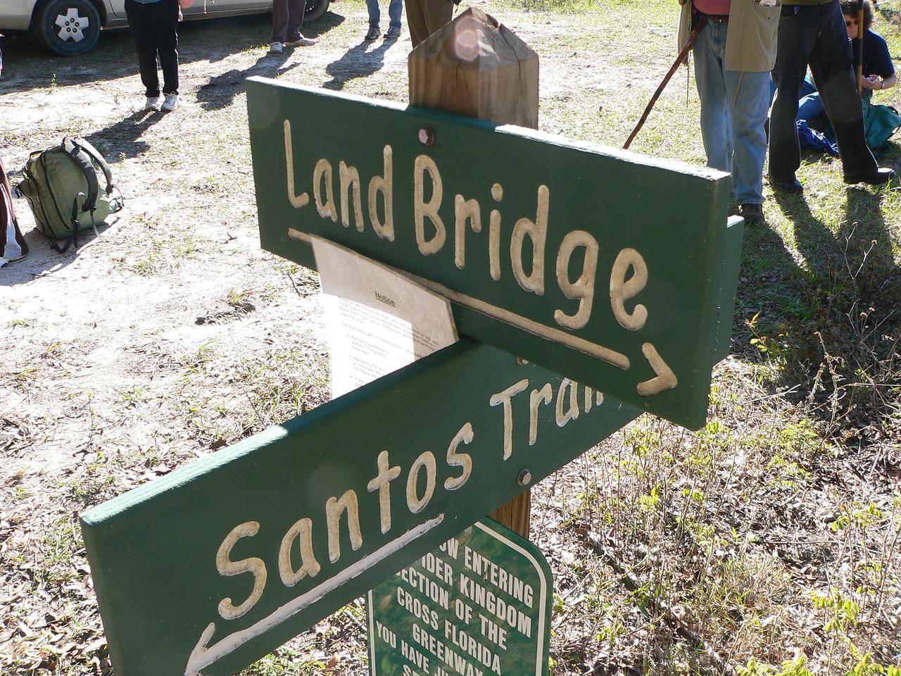 Spider Kingdom Junction<br /> PHOTO CREDIT: Florida Trail Association / Diane Dammiller