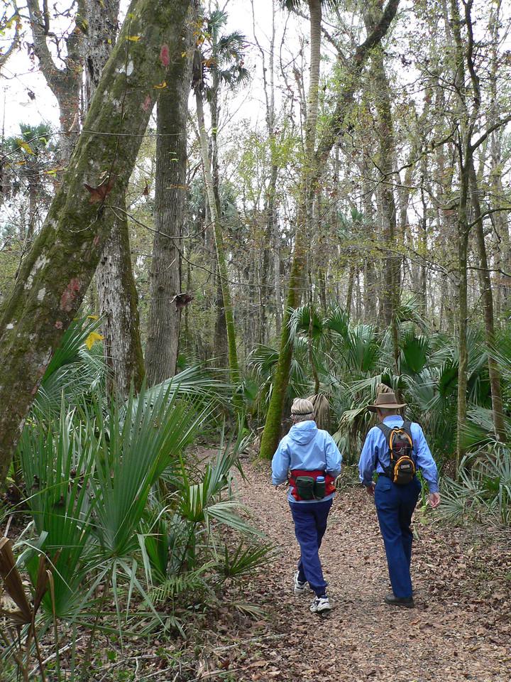 Hiking at Marshall Swamp<br /> PHOTO CREDIT: Florida Trail Association / Diane Dammiller