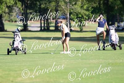 CMS_GolfAction_006