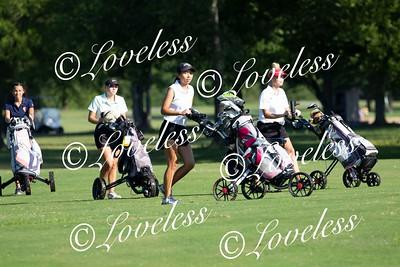 CMS_GolfAction_007