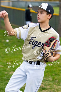 CMS_BaseballAction(MS)016