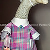 AUGUSTA, ME - JULY 20: This Tuesday July 20, 2021 photo shows Georgie the goose at Farrington Elementary School in Augusta. Georgie is wearing their pink plaid first day of school dress. (Staff photo by Joe Phelan/Staff Photographer)