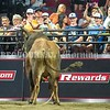 BANGOR, MAINE- JULY 23, 2021<br /> The crowd either waves or gestures for the bull, Little Boy Blue to stay in the arena during the PBR Velocity Tour rodeo competition at the Cross Insurance Center on Friday, July 23, 2021. (Staff Photo by Michael G. Seamans/Staff Photographer)