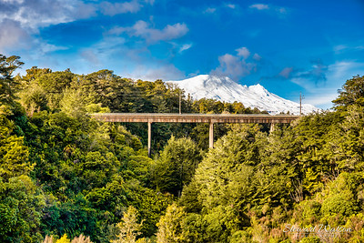 Railway bridge in the National Park with Ruapehu in the background