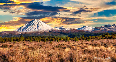 The snow capped peaks in the desert Road featuring Mount_Ngauruhoe