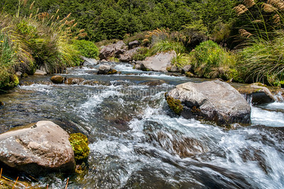 National Park stream